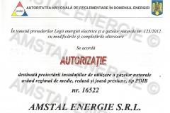 Autorizatie ANRE gaze PDIB Amstal Energie